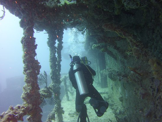 Spiegel Grove: Another Swim through opportunity on the Speigal Grove