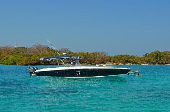 Excursão de barco particular às Ilhas...