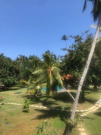 Talalla, Sri Lanka: The beautiful room from my room