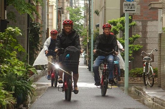 Tokyo Biking Tour by Electric-Powered...