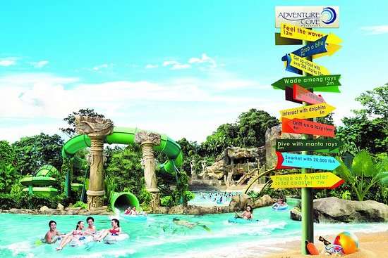 Volle dag Adventure Cove Waterpark ...