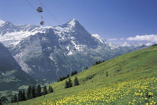 Admisión al Monte First en Grindelwald