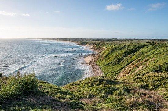 Phillip Island Hike y Aussie Wildlife...