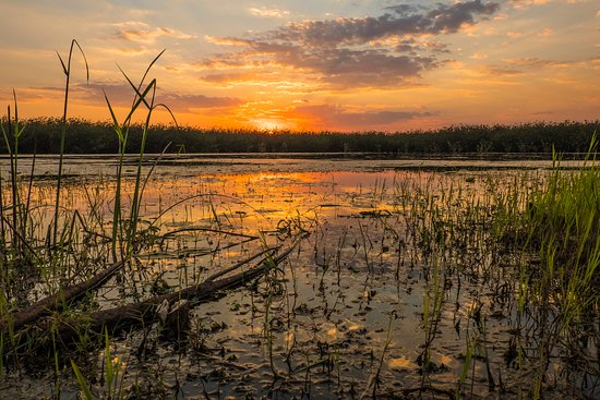 Salima, มาลาวี: Sunset - Photo by Rob Bruyns
