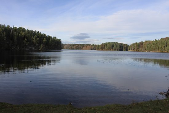 Oslomarka has many lakes from which you can drink the water or take a swim.