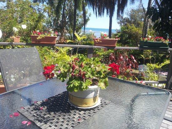 Point Vernon, Αυστραλία: Gorgeous setting