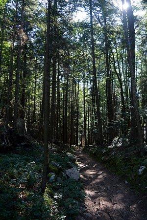 Sentiero delle Sorgenti: sentiero