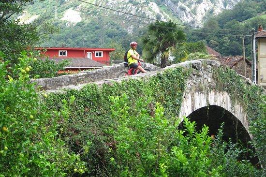 Villanueva De Santo Adriano, Spain: Ruta del Oso