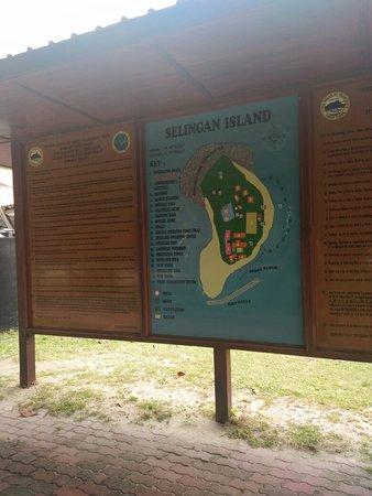 Pulau Selingan, Malaysia: IMG_20180915_103244_large.jpg