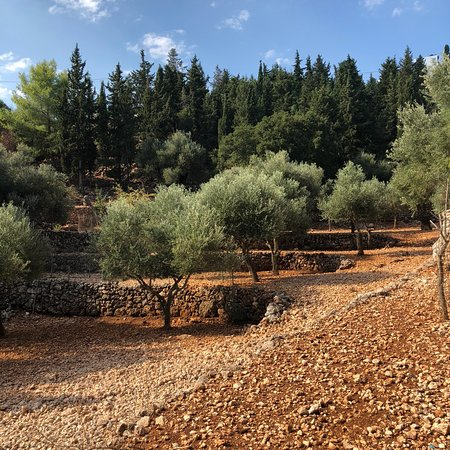 Volimes, Greece: photo0.jpg
