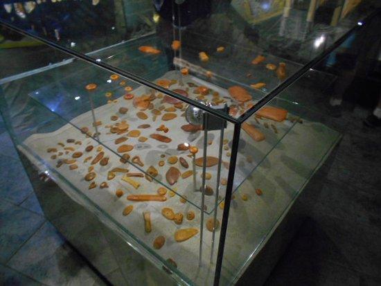 Amber Museum-Gallery: Bärnstenar i glasmonter i nedre avdelningen.