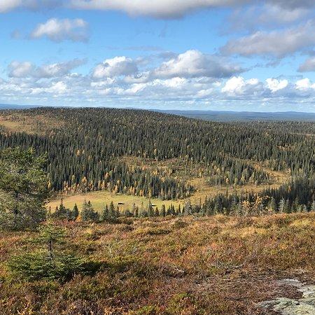 Posio, Finland: photo2.jpg