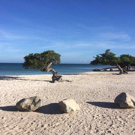 Eagle Beach: photo5.jpg