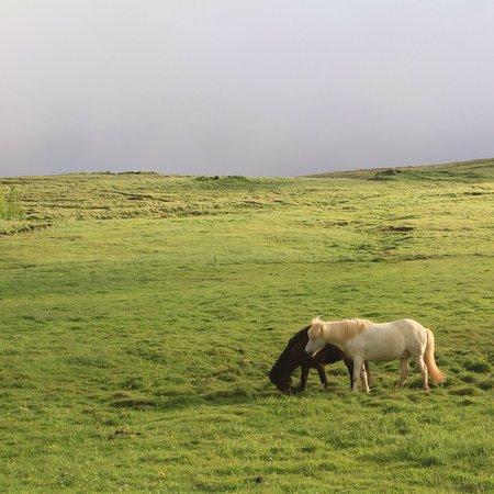 Husafell, Islândia: photo2.jpg