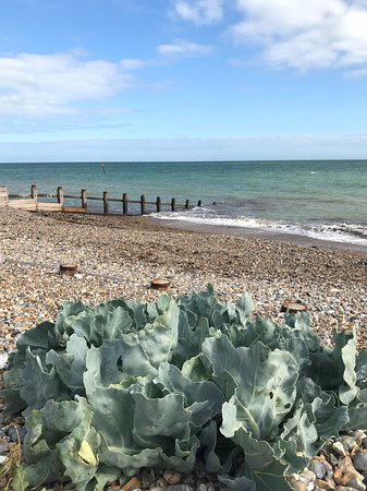 West Sussex, UK: Middleton-on-Sea beach near Elmer