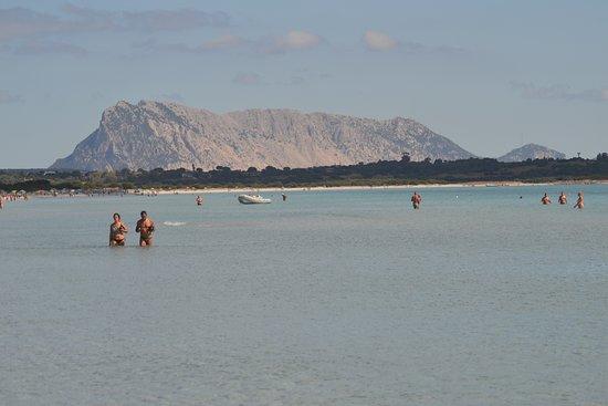 La lunga spiaggia di San Teodoro La Cinta