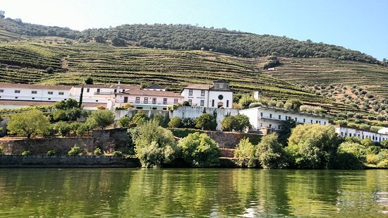 Jorge Barefoot - Wine & Tours: A view of a Quinta along the Douro River