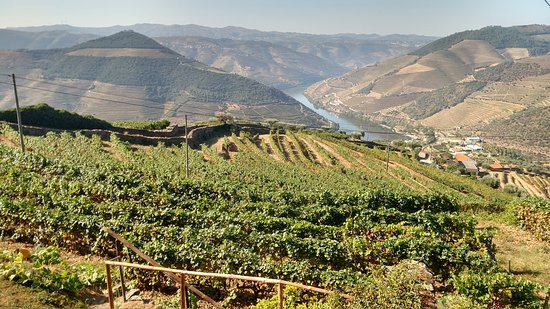 Jorge Barefoot - Wine & Tours: View from an overlook near our first stop in Casal de Loivos