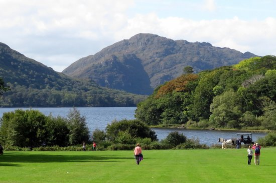 Muckross House, Gardens & Traditional Farms: view from Muckross House at Killarney National Park