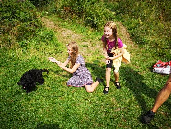 Cullercoats, UK: Great fun