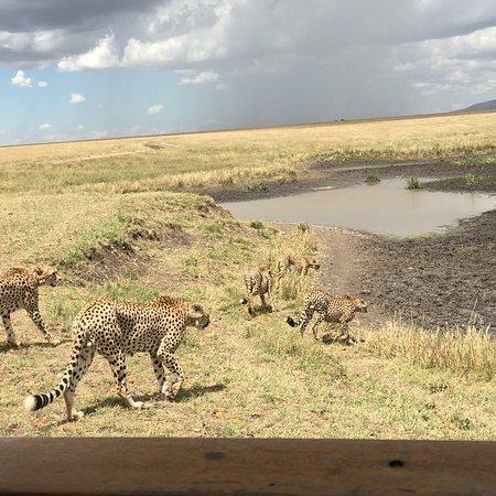 Talek, Kenya : photo5.jpg