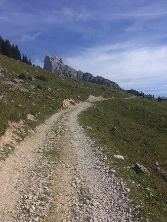 Аннаберг-Лунготц, Австрия: Die gut gehbare Forststrasse