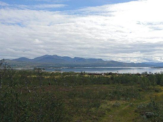 Sor-Trondelag, Norway: DSC_5946_large.jpg