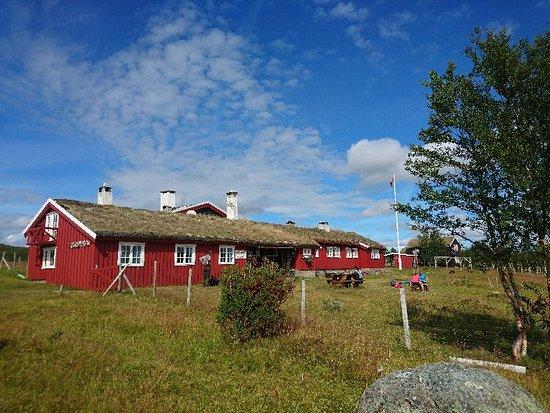 Sor-Trondelag, Norway: DSC_5968_large.jpg