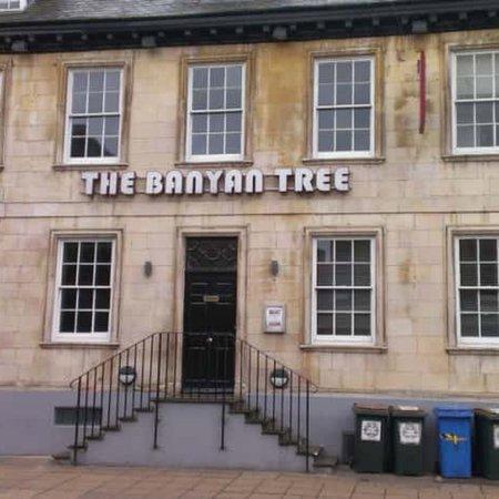 The Banyan Tree: photo0.jpg