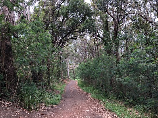 Village Walking Trails: The Village Lake Walking Trail, plan to get your shoes muddy
