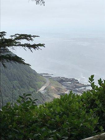 Cape Perpetua Scenic Area : overlooking