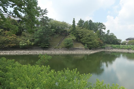 Ara Pond