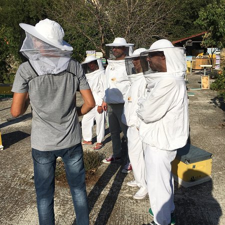 Dias Beekeeping: photo0.jpg