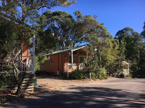 Lane Cove River Tourist Park : quite cosy cabins