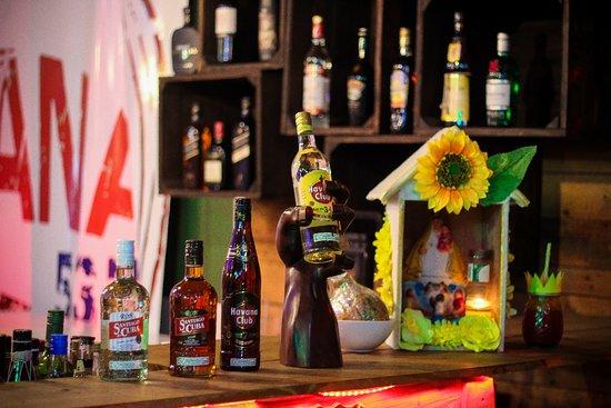 Habana 537 Bar