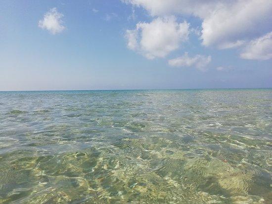 Spiaggia Carratois: IMG_20180917_111626_large.jpg