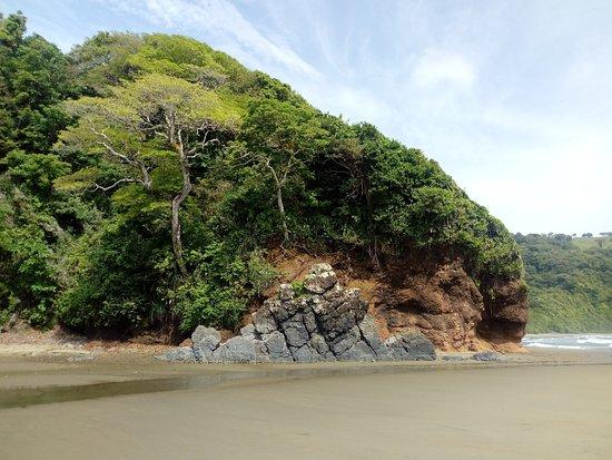 Meksiko Tengah dan Gulf Coast, Meksiko: Naturaleza asombrosa