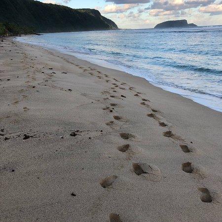 Saleapaga, Samoa: photo3.jpg