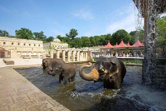 Zoo Hannover Eintrittskarte