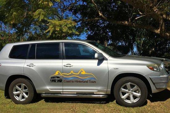 Tour Privado de Sunshine Coast e Noosa