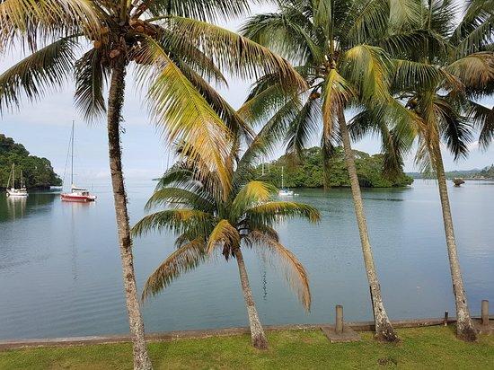 Lami, Fiji: 20180824_092131_large.jpg