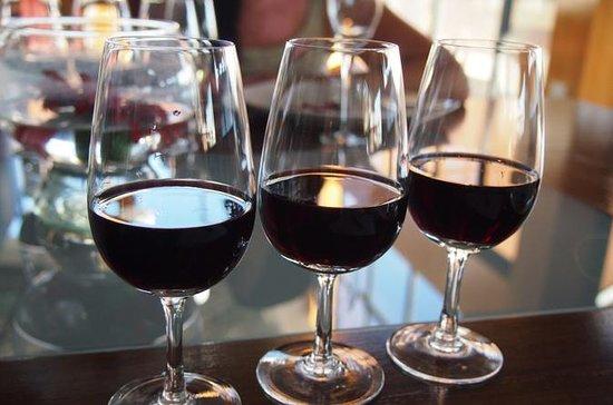 Vandringstur og argentinsk vinsmaking