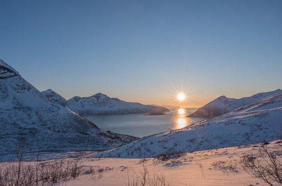 Roadtrip Coastal: Kvaløya com um...