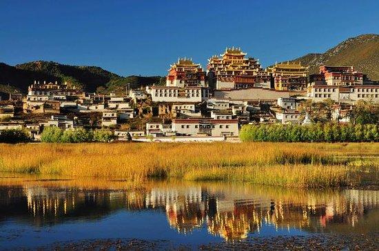 1-tägiges Shangri-La-Kloster und...