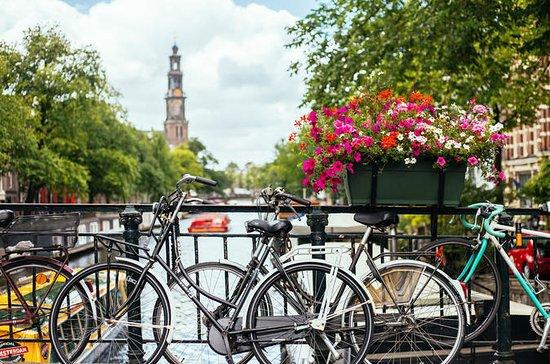 Private Amsterdam Geschichte Tour...