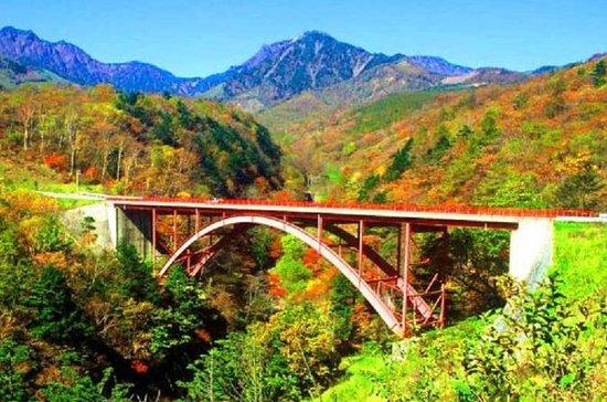 Herbstlaub in Yamanashi: Higashizawa...