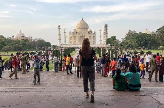 Tour Taj Mahal de 1 día desde Delhi en...