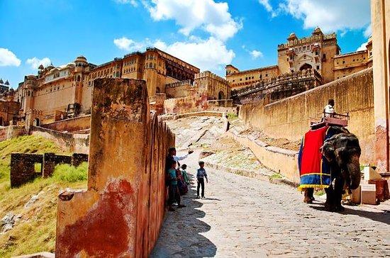 Excursión de 1 día a Jaipur (ciudad...