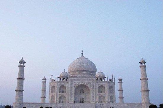 Para el Taj Mahal y vuelta- viaje del...