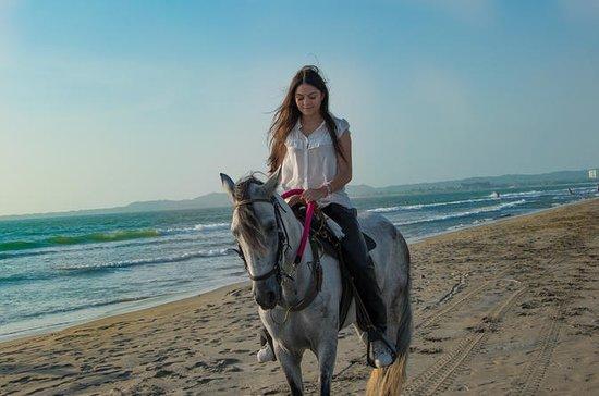 Ridetur på stranden i Cartagena